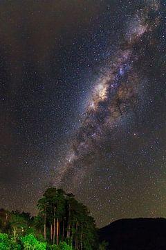 Melkweg Ranomafana von Dennis van de Water