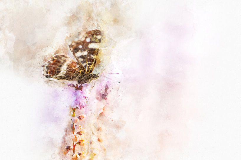 Vlinder 19 van Silvia Creemers