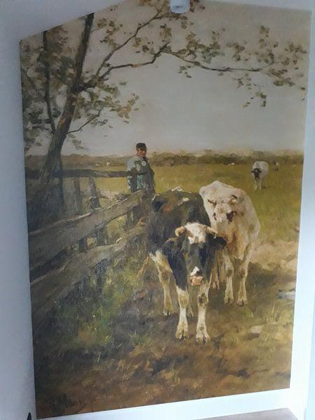 Klantfoto: De melkbocht, Anton Mauve, op behang