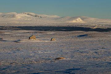 Eenzame huisjes op de vlakte. van Marco Lodder