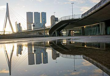 Erasmusbrug en kop van zuid in Rotterdam weerspiegelt