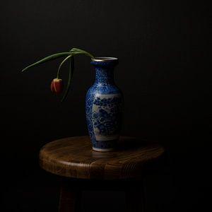 Oud Hollandse Tulp in Vaas van