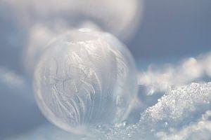 Bevroren Bellenblaas Bubbel bel van Wendy de Waal