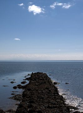 Dammetje bij Waddendijk, Terschelling von Rinke Velds