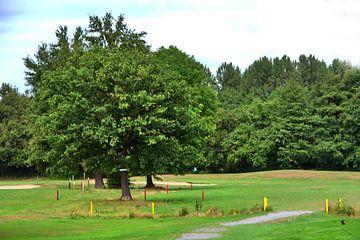 Golfbaan 2 van Edgar Schermaul