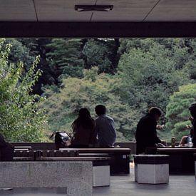 Japan - Herbstnachmittag in Tokyo - Yoyogi-Park von Roger VDB