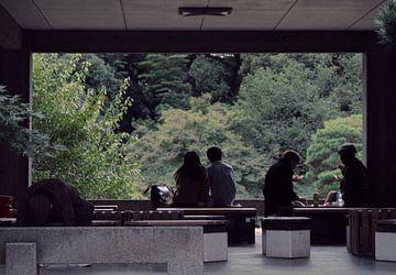 Japon - après-midi d'automne à Tokyo - parc Yoyogi sur Roger VDB