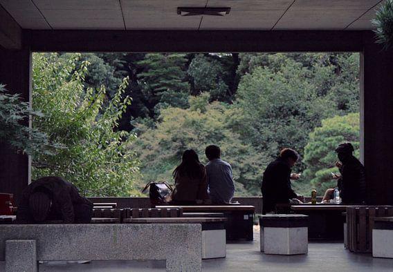 Japan - herfstmiddag in Tokio - Yoyogi park