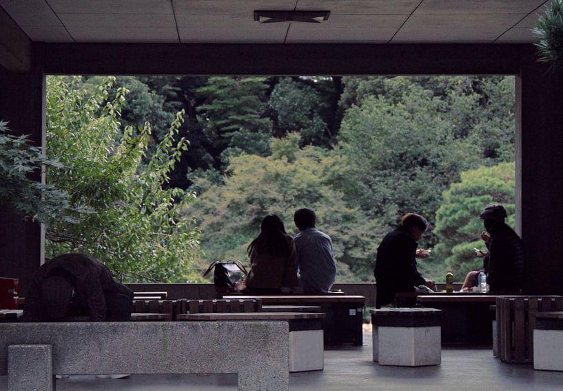 Japan - herfstmiddag in Tokio - Yoyogi park van Roger VDB