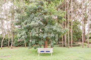 Sit down with me and stay awhile van Hannie Kassenaar