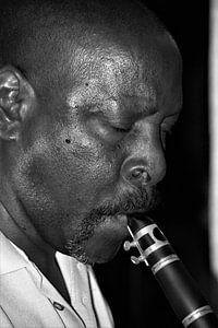 klarinet van Michel van Vliet