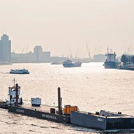 Entreprises sur la Meuse à Rotterdam sur Anouschka Hendriks