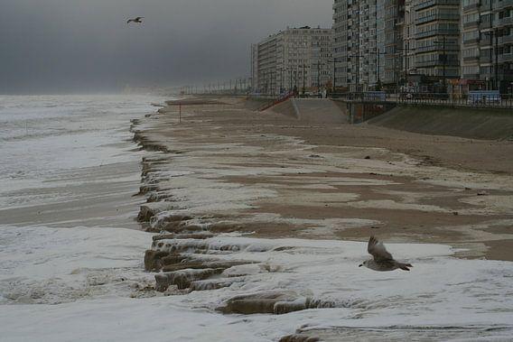 Storm aan zee