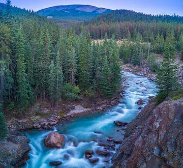 Astoria River. Jasper National Park, Canada. van Dennis Werkman