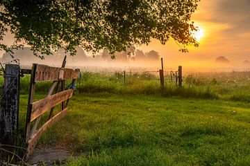 open hek laat de zon binnen van Sylvain  Poel
