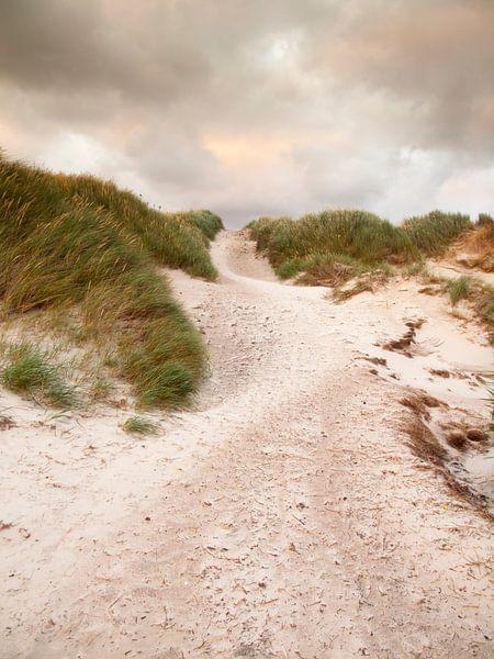 Leads to the Sea van David Hanlon