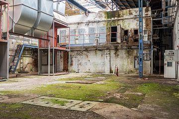 """Lieu perdu """"Lieux abandonnés"""" Ancienne usine sur Animaflora PicsStock"""