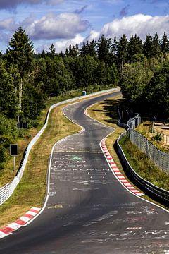 Nurburgring Nordschleife Pflanzgarten van Neil Kampherbeek