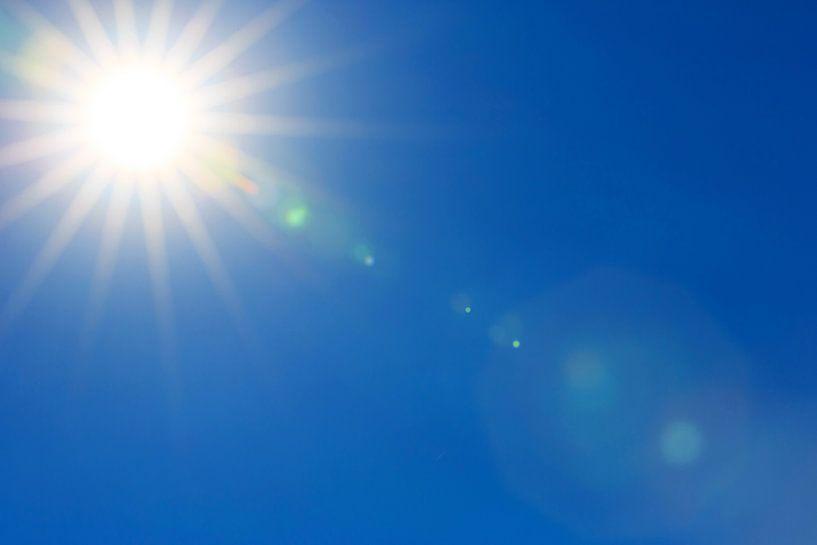 Die helle Sonne von Frank Herrmann
