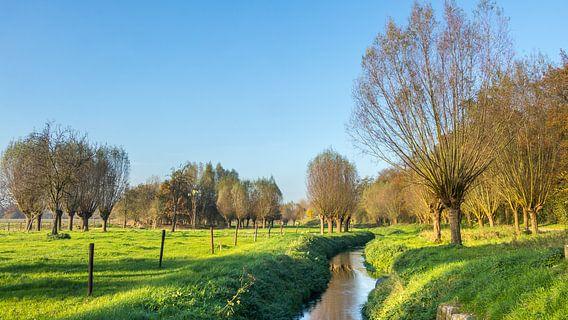 Limburgs landschap van Hilda Weges