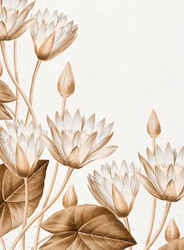 Lotus - Fleurs sur Rudy en Gisela Schlechter