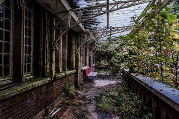 Lunatic Asylum - II von Anjolie Deguelle