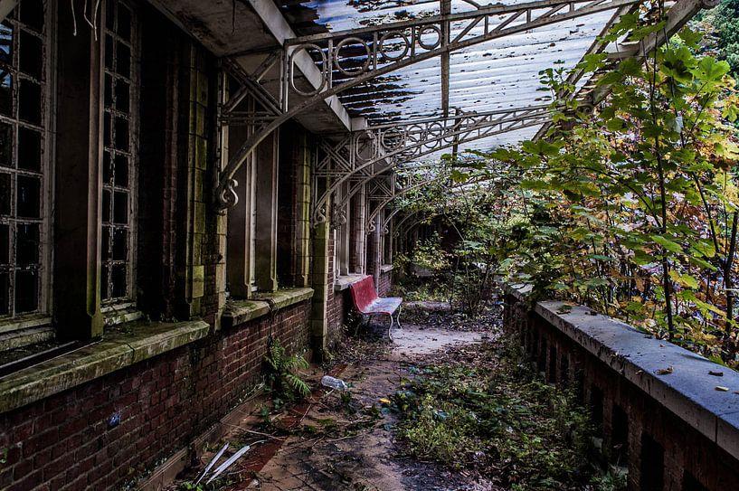 Lunatic Asylum - II van Anjolie Deguelle