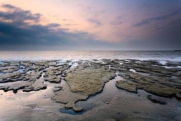 Vormen aan de Waddenzee van Ron ter Burg