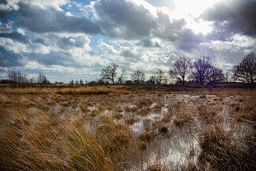 Sonntagsspaziergang von Johan Mooibroek