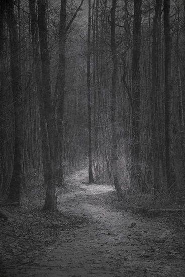 Road to nowhere van Jenny de Groot