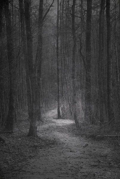Road to nowhere von Jenny de Groot