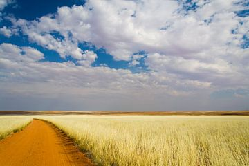 Namibië van Denis Feiner