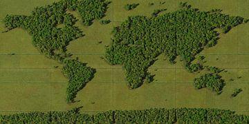 Weltkarte Wald von Frans Blok
