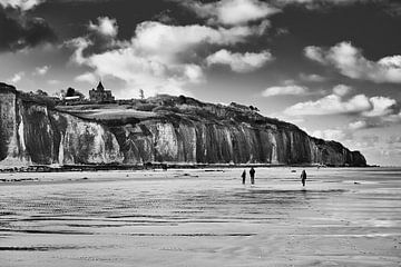 Schwarz-Ampel;weiße Landschaft Normandie von Paul Delaet