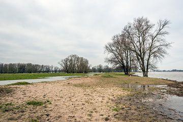 Overstromende uiterwaarden van een Nederlandse rivier van Ruud Morijn