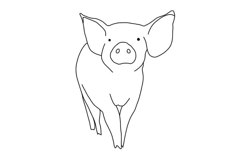Porcinet sur MishMash van Heukelom