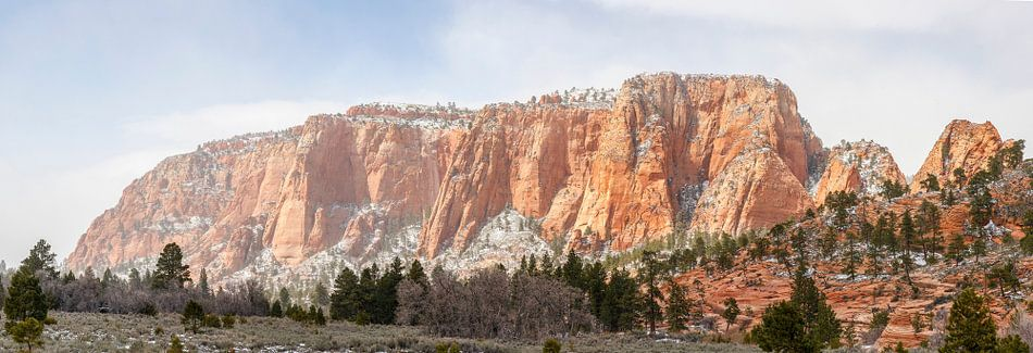 Imposant rotsplateau in Zion National Park van Juriaan Wossink