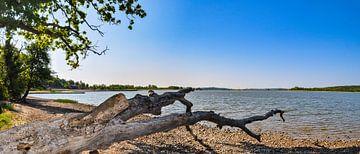 Lagune in Lietzow auf Rügen, Naturstrand von GH Foto & Artdesign