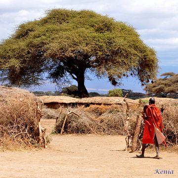 Masai dorp in Kenia van Véronique Termoshuizen