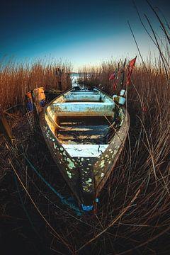 Boot versteckt im Schilf von Florian Kunde