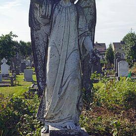 Oude Rath Begraafplaats in Ierland van Babetts Bildergalerie