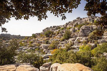 Landschap met rotsen in Andalusië in Spanje