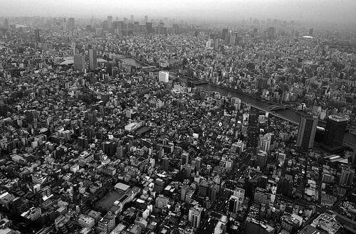 Streets of Tokyo von Alexander van der Linden