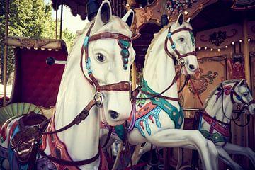 Karussell mit Pferden von Sjoerd van der Hucht