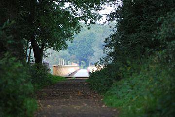 Ruhiger Waldweg zur Brücke von T. Berrevoet
