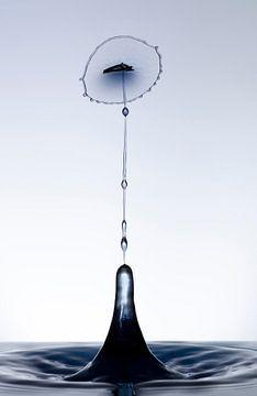 Zwarte druppel in een tulp vorm1 van Focco van Eek