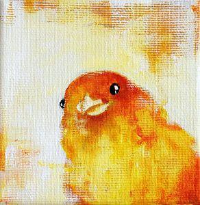 Yellow Bird 3