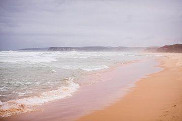 South Pacific Ocean van