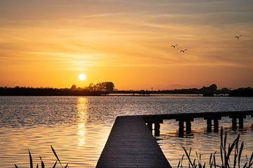 goedemorgen zonnestraaltje van Marinus Engbers