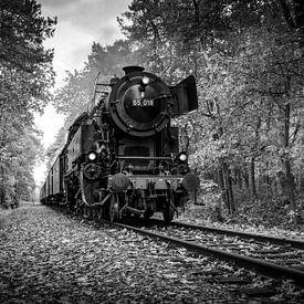 Autumn Train in Black and White sur Raymond Voskamp